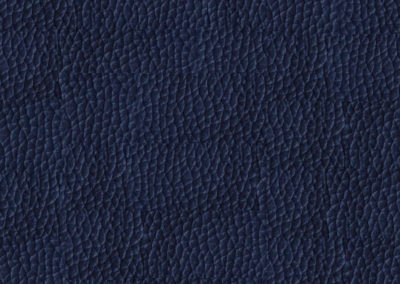 Blue Notte leatherflooring and leather wall-covering